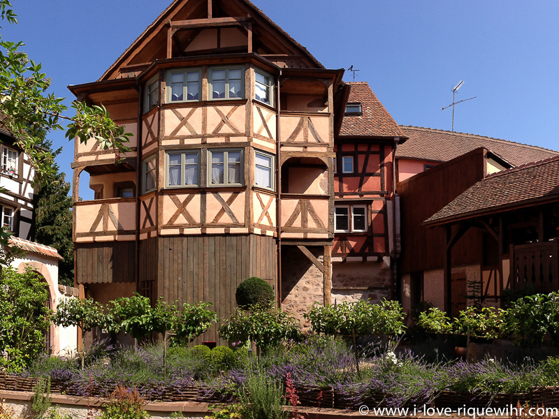 Our 15 vacation rentals in Alsace are awaiting you